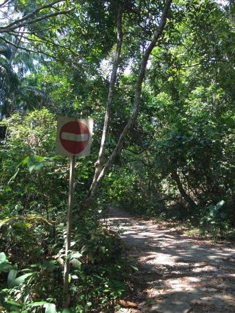 Einbahn. Nicht für den Affen.