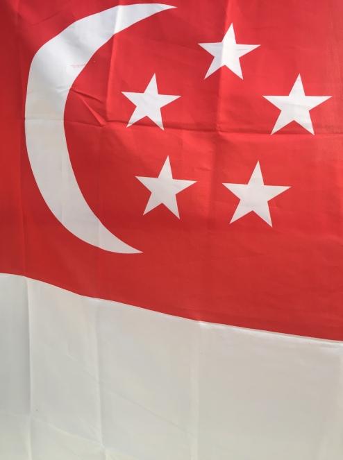 Die Farben waren gleich. Die richtige Flagge fand ich dann auch noch.
